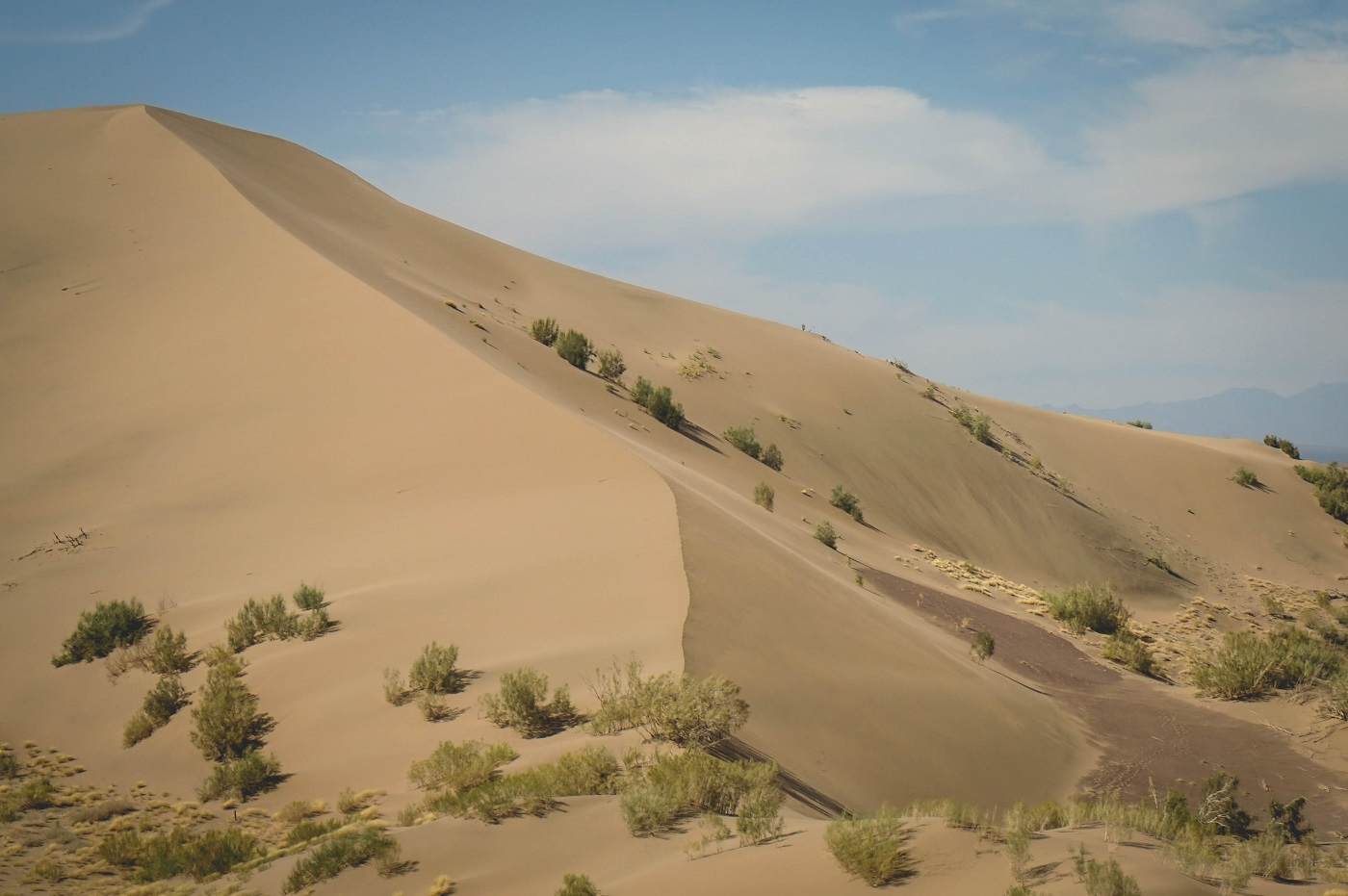 DariusRoby.com - Climbing the singing dunes in Kazakhstan. The climb gives the impression of being perilous but the sand is so thin and soft that each step easily left me trudging knee deep.